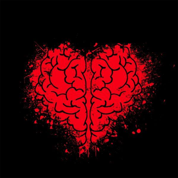 Broken heart, disconnected brain