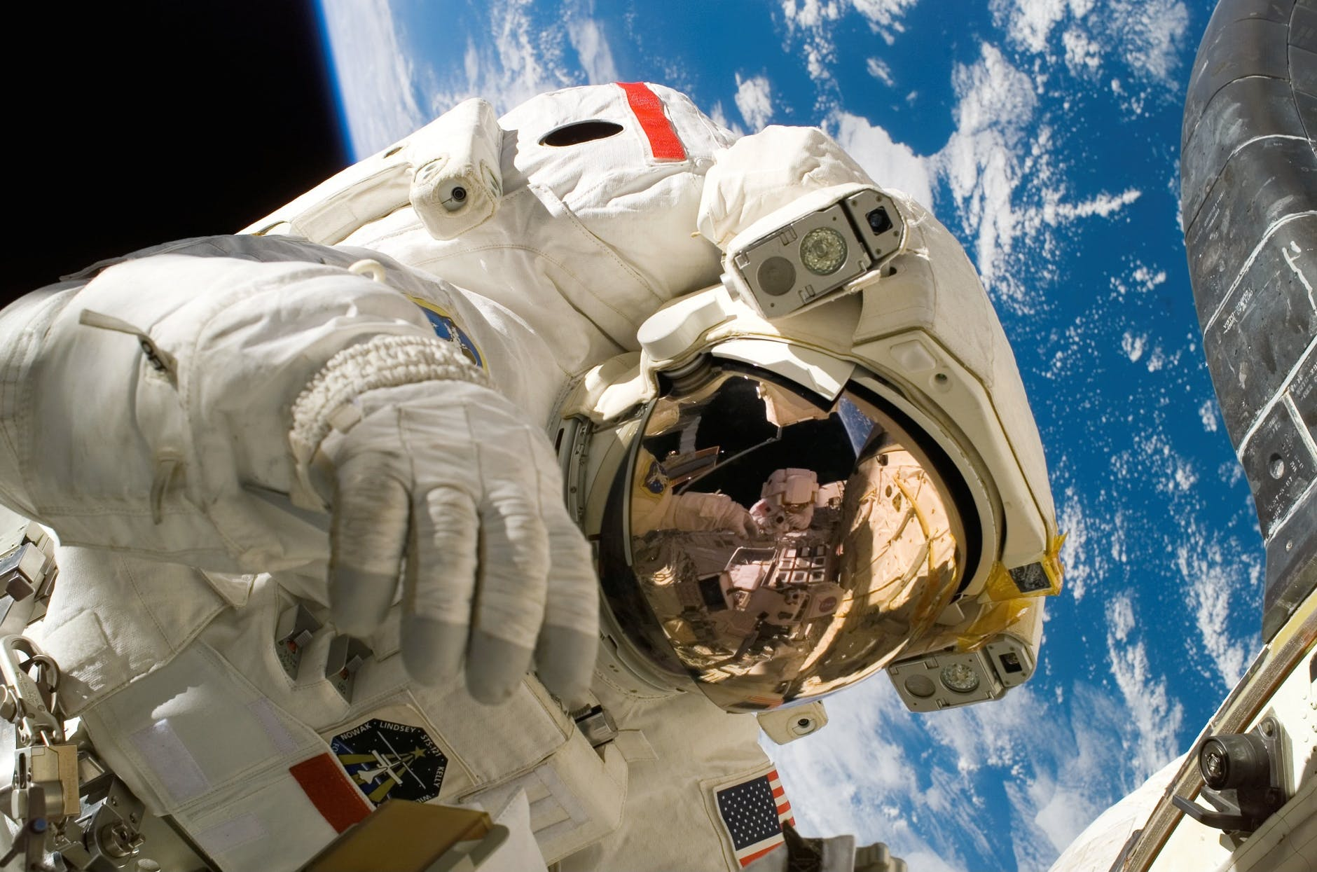 spaceflight alters mitochondrial processes
